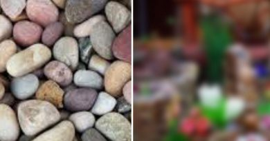 Когда я несла пакет камней с речки все смеялись,но потом просили поделиться! И вот почему…