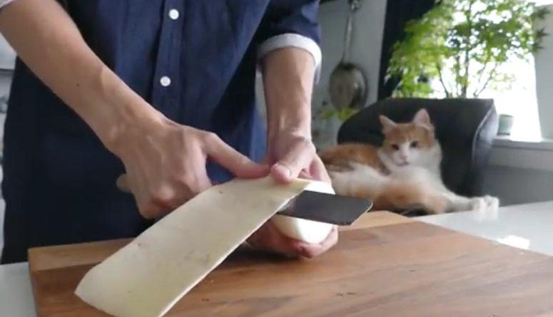 Когда парень купил ржавый нож втридорога, все над ним посмеялись… Но потом они кусали локти!