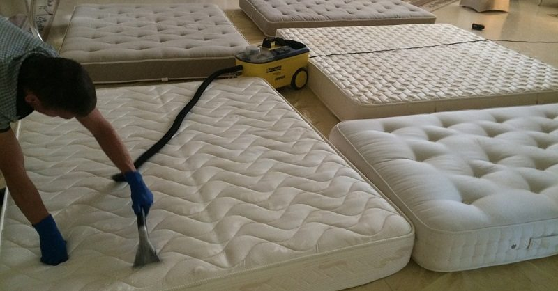 Топ 7 опасностей, которые поджидают тебя в кровати. пылевые клещи – просто цветочки по сравнению с этим…