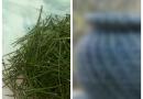 Она весь сезон собирала сосновые иголки, а соседи удивлялись. Теперь они ходят к ней в дом, как в музей…